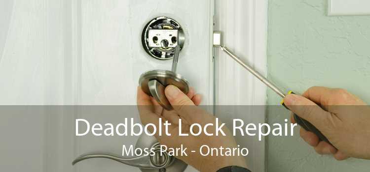 Deadbolt Lock Repair Moss Park - Ontario