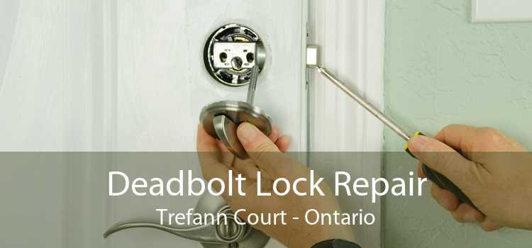 Deadbolt Lock Repair Trefann Court - Ontario