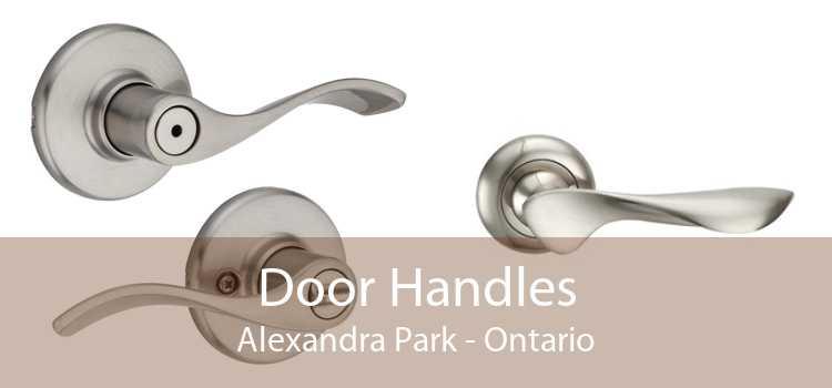 Door Handles Alexandra Park - Ontario