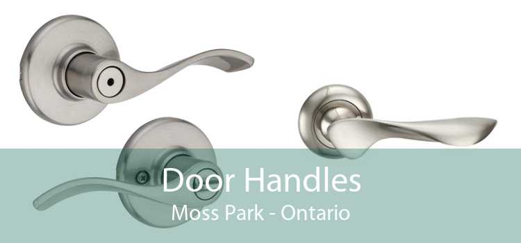 Door Handles Moss Park - Ontario