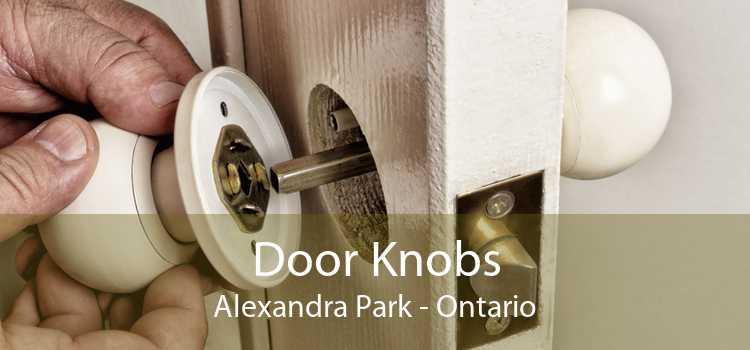 Door Knobs Alexandra Park - Ontario