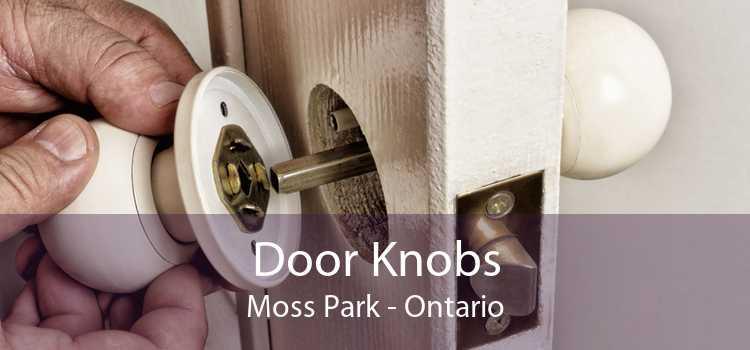 Door Knobs Moss Park - Ontario