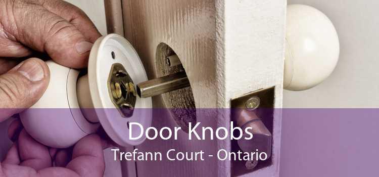 Door Knobs Trefann Court - Ontario