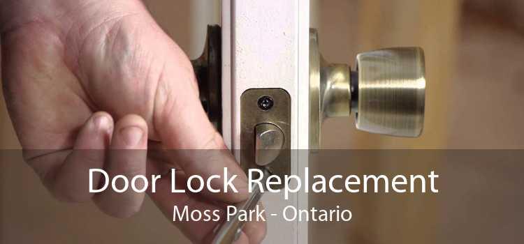 Door Lock Replacement Moss Park - Ontario