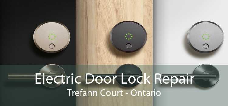 Electric Door Lock Repair Trefann Court - Ontario