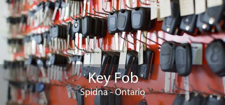 Key Fob Spidna - Ontario