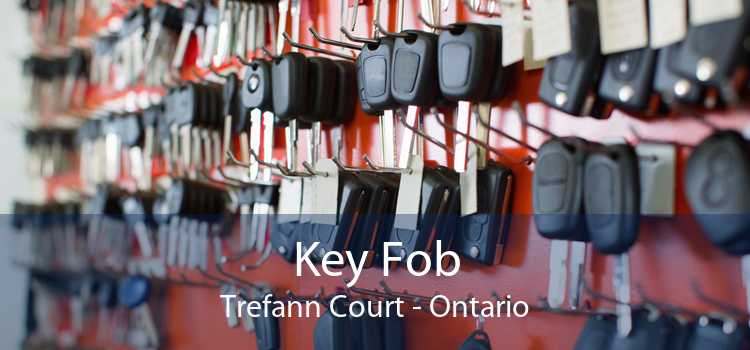 Key Fob Trefann Court - Ontario
