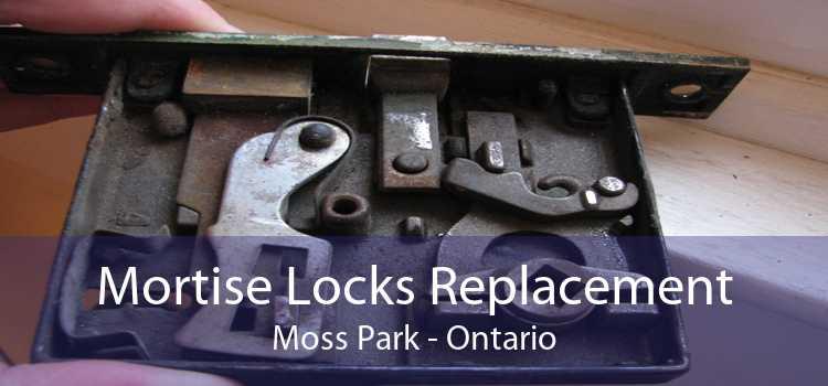 Mortise Locks Replacement Moss Park - Ontario
