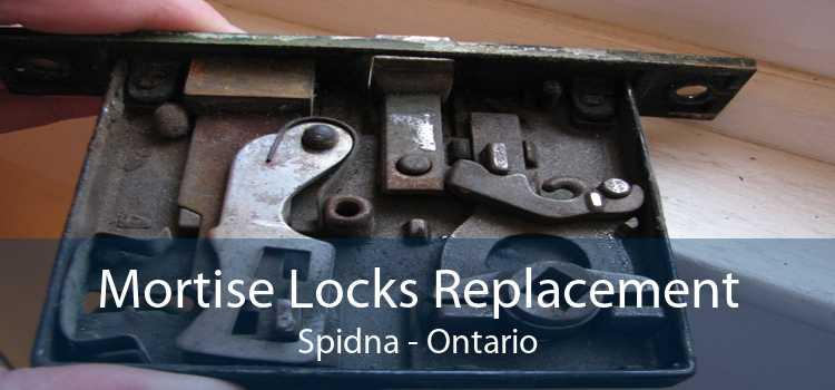 Mortise Locks Replacement Spidna - Ontario