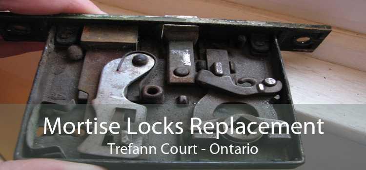 Mortise Locks Replacement Trefann Court - Ontario