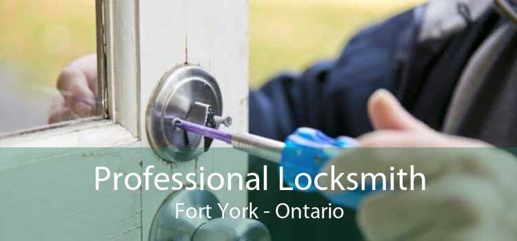 Professional Locksmith Fort York - Ontario