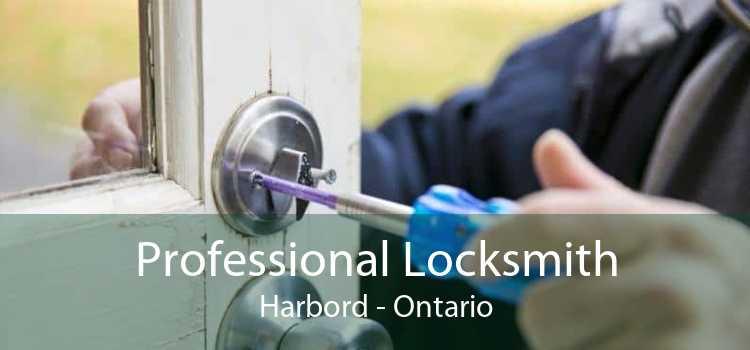 Professional Locksmith Harbord - Ontario