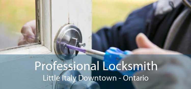 Professional Locksmith Little Italy Downtown - Ontario