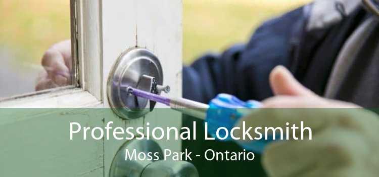 Professional Locksmith Moss Park - Ontario
