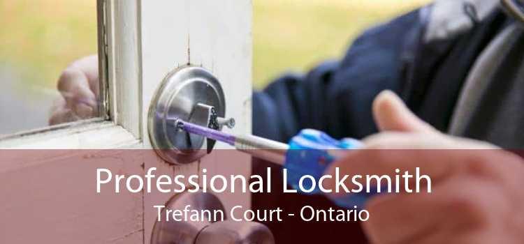 Professional Locksmith Trefann Court - Ontario