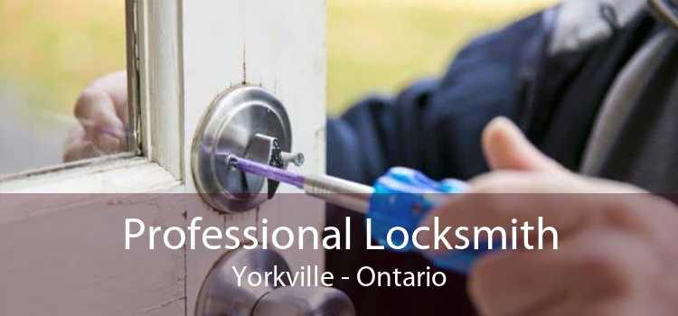 Professional Locksmith Yorkville - Ontario