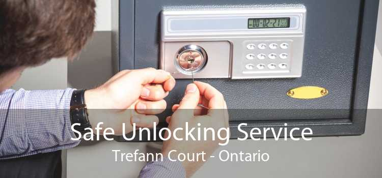 Safe Unlocking Service Trefann Court - Ontario