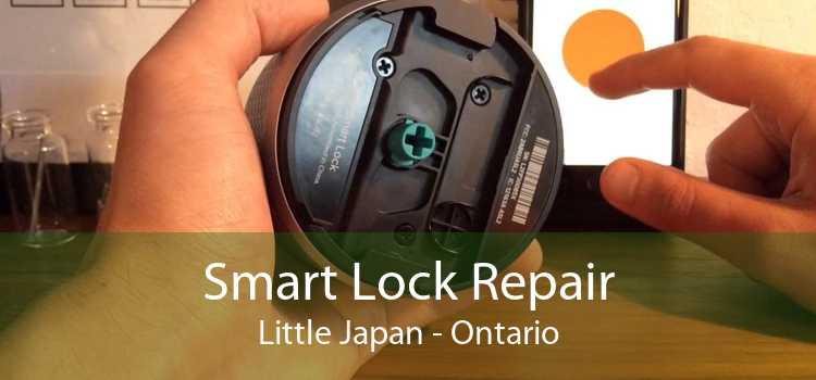 Smart Lock Repair Little Japan - Ontario